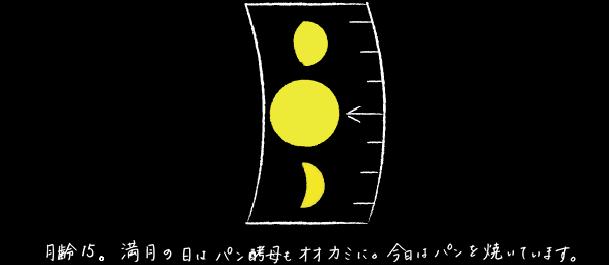HIYORI BROT